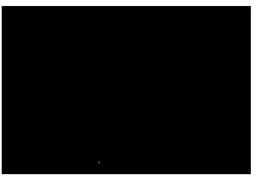 Thibaut de Lafforest
